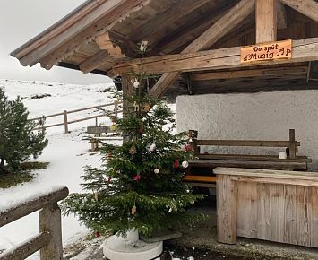 Christbaum_Kranzhornalm_Winter_Erl